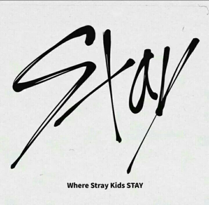 Stay For Stray Kids