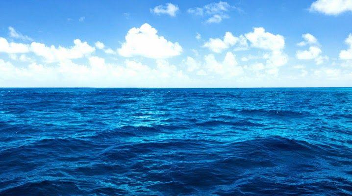 Porque que não podemos beber água do mar? ~ curiosityFlux