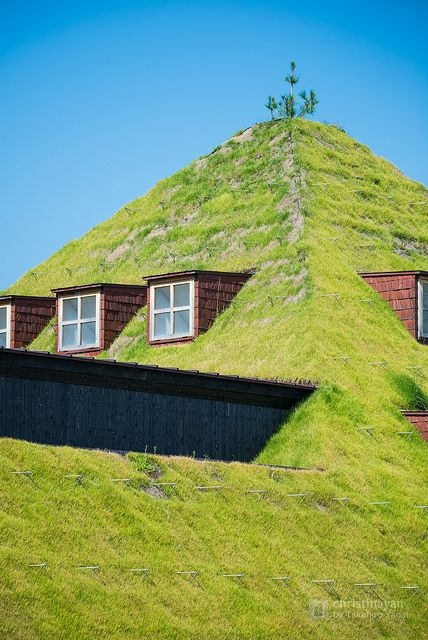kuhles teehaus takasugi an von terunobu fujimori standort bild und eabecddfdad architects