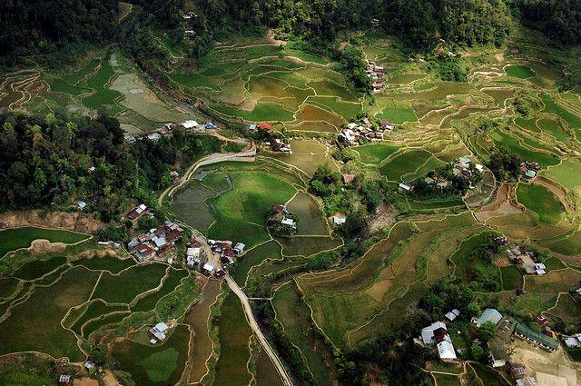 La cordillera tallada (Banaue, Filipinas)