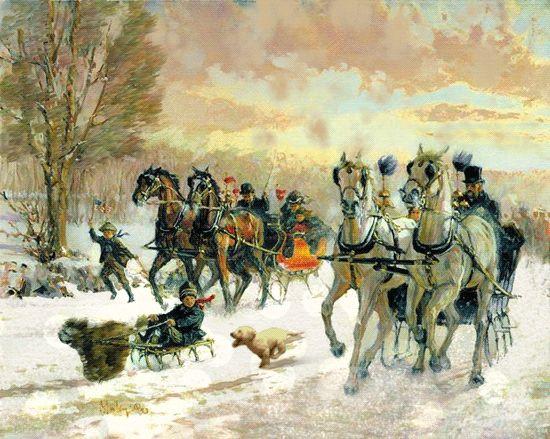 Зимние катания с лошадьми