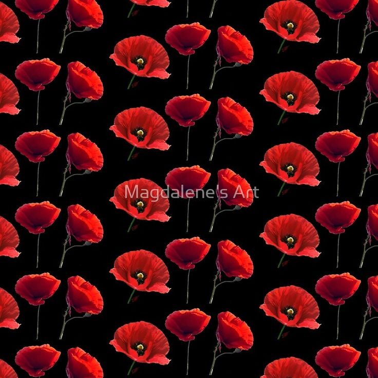 I love red poppies  - artwork by Magdalene's Art -