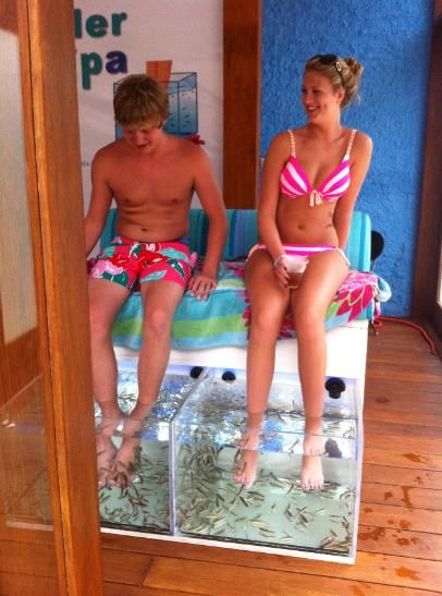 Fish pedicure. The fish eat away your dead skin and make your feet smooth.  Islander Fish Spa at Mr. Sanchos in Cozumel