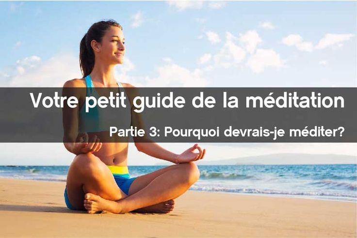 """La troisième et dernière partie de ce 'petit guide de la méditation' répond à la question: """"pourquoi devrais-je méditer""""?"""