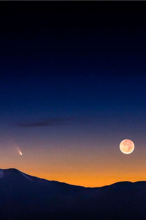 expressions-of-nature:  Comet PanStarrs & Earthshine Moon | Greg Essayan