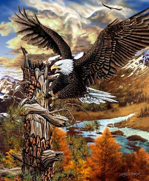 9 Hidden Eagles Optical Illusion Http Www Moillusions