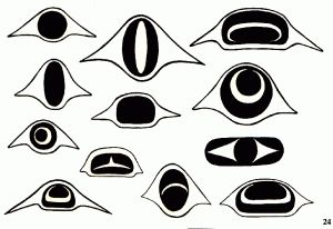 Eye designs used in West Coast Native Art.                                                                                                                                                      More