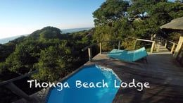 Thonga Beach Lodge on the Matutaland cost of South Africa is one of our favourite chilling places. We put this short movie together after one of our visits there.   See more of our work at http://www.rogerandpatdelaharpe.com