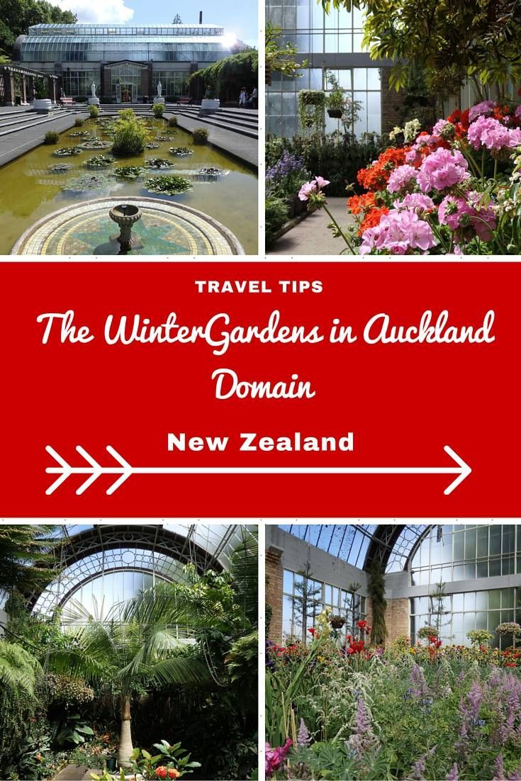 New Zealand Travel Inspiration - Looking for things to do in Auckland City then why not visit The Wintergardens in the Auckland Domain, perfect if you're already planning a visit to the Auckland Museum as it's right next door.  Take a picnic and enjoy the views over Auckland Harbour from this beauty spot.  Click the link to read more travel tips for Auckland, New Zealand.