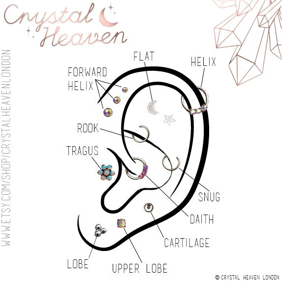 Ear Piercing Diagram Featuring Some Of Our New Collection Body Jewellery Bodyjewellery Earpierc Ear Piercing Diagram Three Ear Piercings Guys Ear Piercings