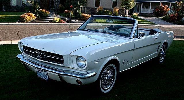 1964 1/2 Ford Mustang. My all time dream car since I was a teen and the worlds greatest boss- tim Murphy- had one.  Tj