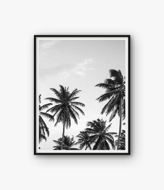 Palm Tree Print, Tropical Print, Botanical Print, Palm Tree Wall Art, Printable Palm Tree, Summer print, Palm Tree Poster, Botanical Poster  ◆ INSTANT DOWNLOAD Please note, this is a digital product, saving you delivery time and shipping costs. No physical product will be shipped. Frame and background are not included.  ◆ FILES & SIZES All files are high resolution (300 dpi) ensuring best quality when printed. Includes the most popular sizes:  • 4 x 6 JPG file • 5 x 7 JPG file • 8 x 10 JP...