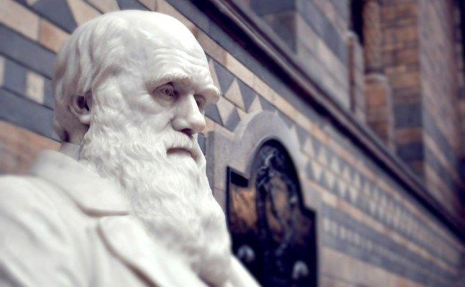 Darwin contra la homeopatía. 09/08/17