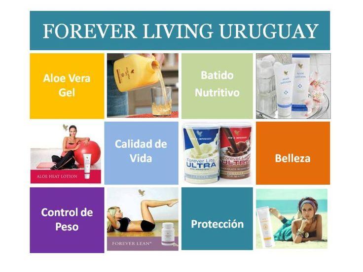 Forever Living Products elabora productos en base a Aloe 100% estabilizado y los productos de la Colmena