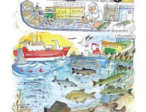 Ruuan reitti kala, kuvitus Heli Pukki, Ruokatieto