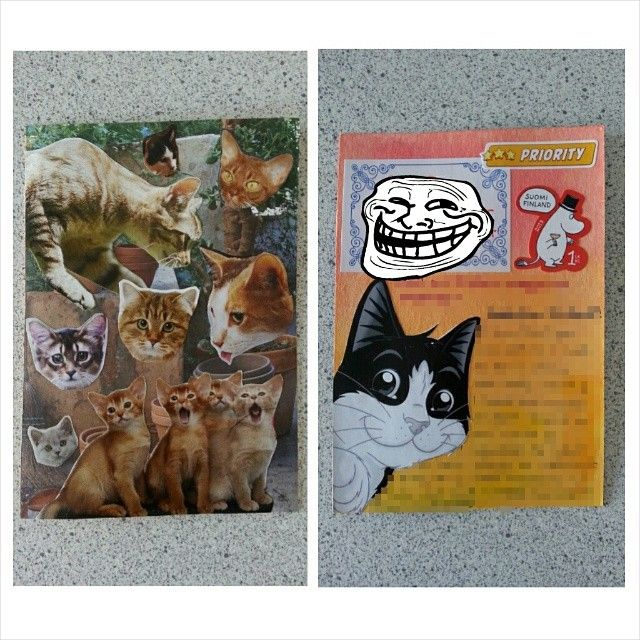Mail art from magazine clippings PC - my parner was a self proclaimed cat lady so I figured she'd enjoy this ;)