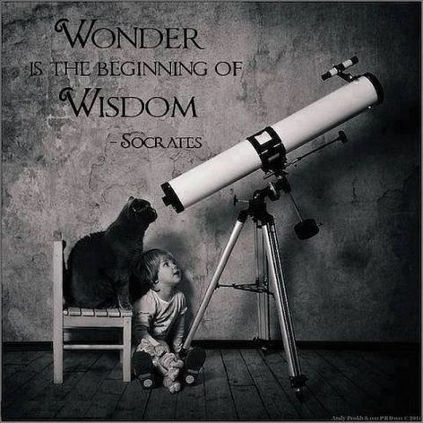 "Wonder Is the beginning Of Wisdom. - Socrates,  469-399 BC. Socrates is generally considered to be the founding figure of all Western philosophy.    We know of his life through the writings of his students, including Plato and Xenophon. His ""Socratic method"" laid the groundwork for Western systems of logic and philosophy. Socrates always emphasized the importance of the mind over the relative unimportance of the human body.  #wisdom #wonder #life #socrates"