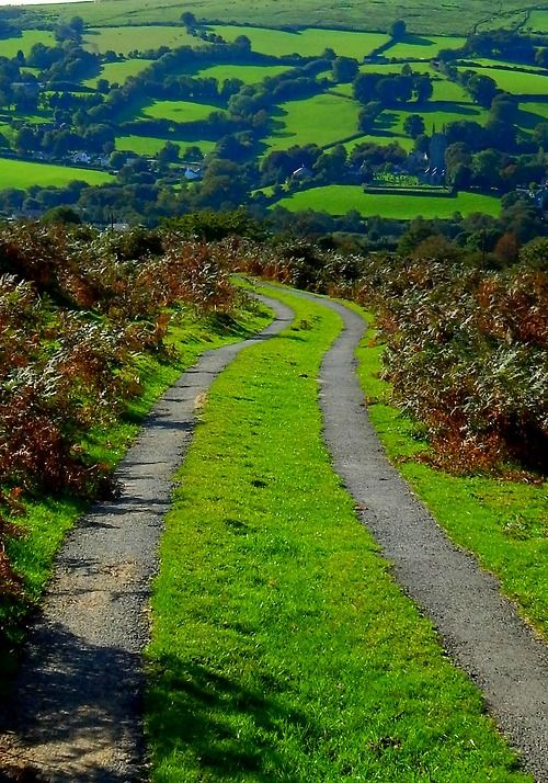 Widecombe In The Moor, Dartmoor, Devon, England, UK