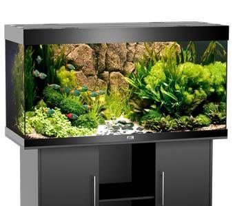 Juwel Rio 300 Fish Tank