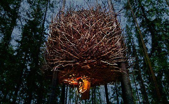 Bird Nest hotel