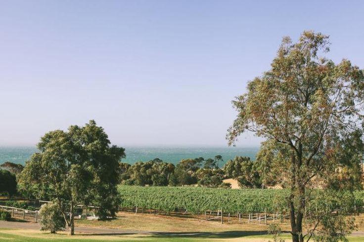Terindah Estate, Bellarine, Victoria