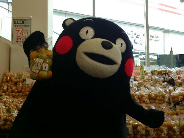 今からパントリー明石店さんで熊本県産のみかんのPRのお手伝いだモン! |くまモン【公式】の投稿画像
