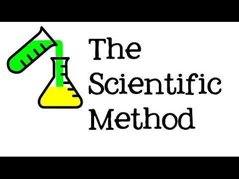 The Steps of the Scientific Method for Kids - Science for Children: FreeSchool - YouTube