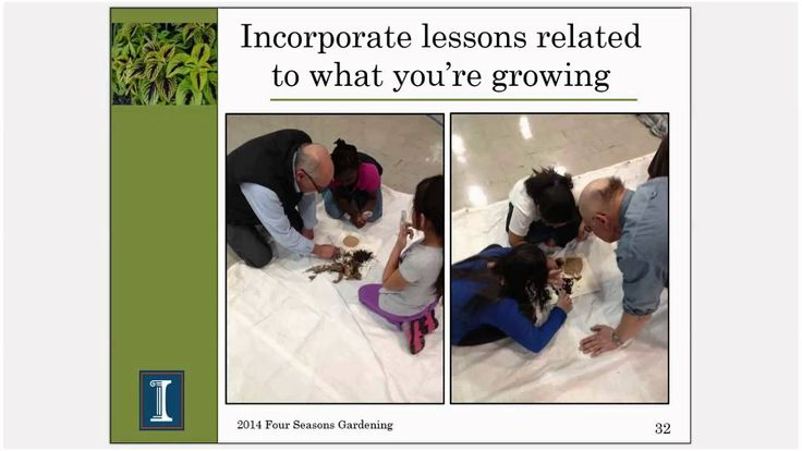 Four Seasons Gardening Series - Starting a Youth Garden. Presented by Candice Miller with University of Illinois Extension.
