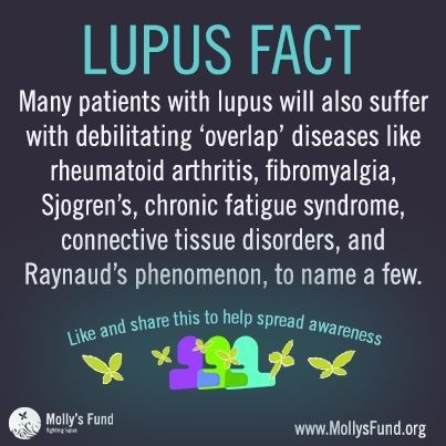 lupus facts: gottem all smh