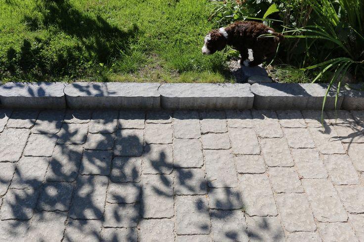 Verona-kivet ja Laineri reunakivi.jpg 1200×800 pikseliä