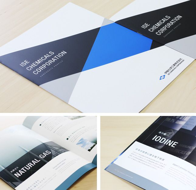 324 Best Annual Report Template年报 Images On Pinterest | Flyer