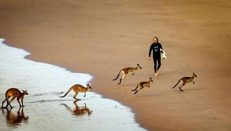 Emerald Beach, Coffs Coast, Australia