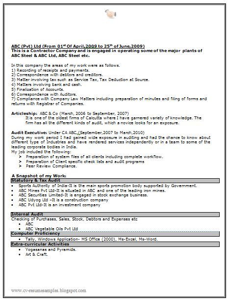 sarkari naukri resume sample free download doc  2