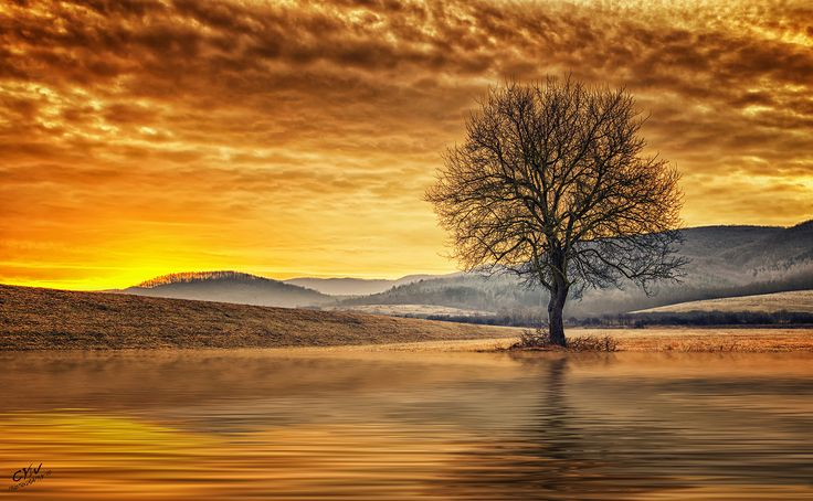 Solitude by Cywphotography on 500px