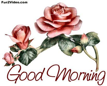 Good Morning morning good morning morning quotes good morning quotes good morning gifs good morning greetings