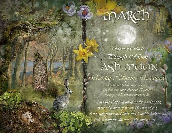 MARCH  Moon of Winds  Plough Moon  ASH MOON  Eostar: Spring Equinox  Light and Dark are in balance, but from now until Autumn Equinox, the days will be longer than the nights.  And the Spring arose on the garden fair, Like the spirit of Love felt everywhere.  And each flower and herb on Earth's dark breast, Rose from the dreams of it's wintery rest.