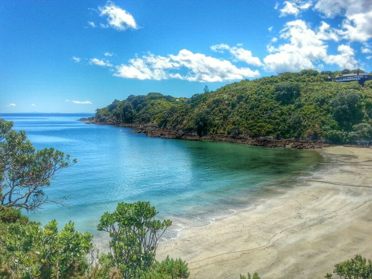 Little Oneroa beach. Waiheke Island. New Zealand