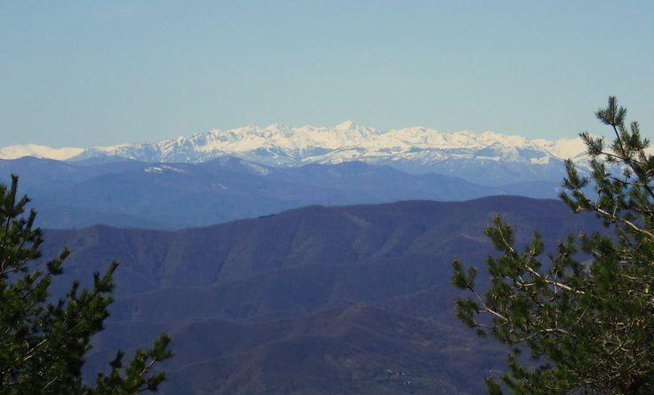 Wandeling van Alpicella naar de top van de Monte Beigua, met spectaculair uitzicht over de maritieme Alpen.