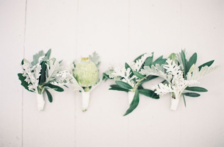 Foliage boutonnieres - a little more masculine than their floral counterparts!