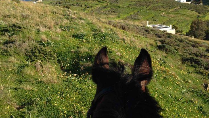 Syros Equestrian Club / Ιππικός Όμιλος Σύρου