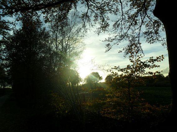 Het zonnetje schijnt weer eens