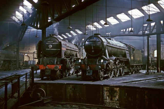 LNER A1 4-6-2 60129 'Guy Mannering', and LNER V2 2-6-2 60828 inside York North Shed (50A) on 19th July 1965. (Bill Wright)