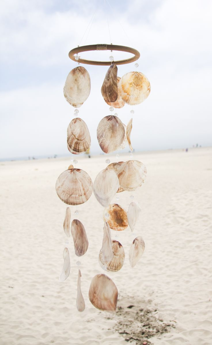 """One cannot collect all the beautiful shells on the beach. One can only collect a few. One moon shell is more impressive than three. There is only one moon in the sky."" ― Anne Morrow Lindbergh, Gift from the Sea"