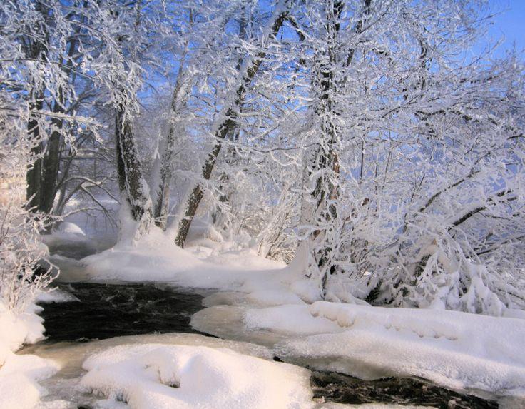 Lesbiana en la naturaleza de invierno 2