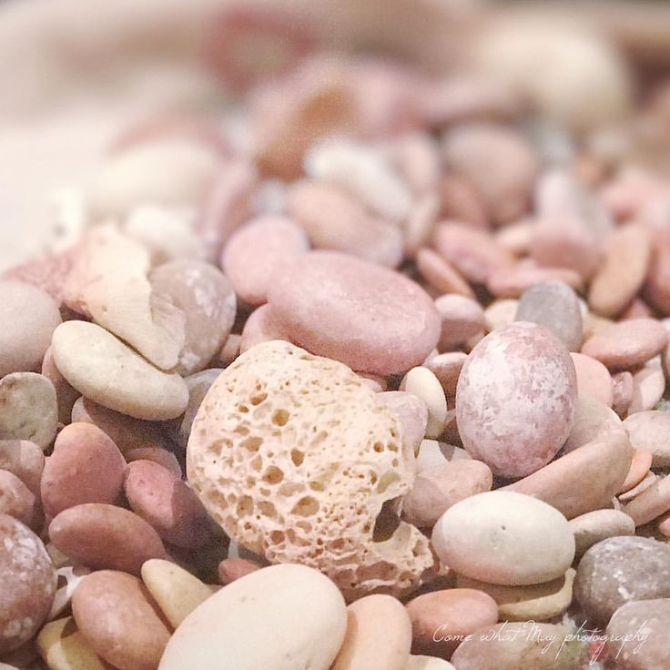 """21 Likes, 1 Comments - Noggin (@scratchyanoggin) on Instagram: """"