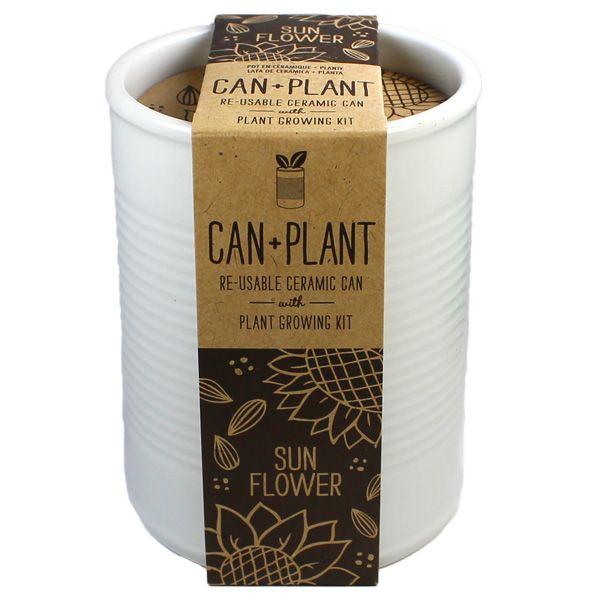 White Can Plant Tournesol : kit à germer pour s'initier à la culture du tournesol dans un pot en céramique en forme de boîte de conserve.  #cadeau #plantes #graines #canplant #tournesol