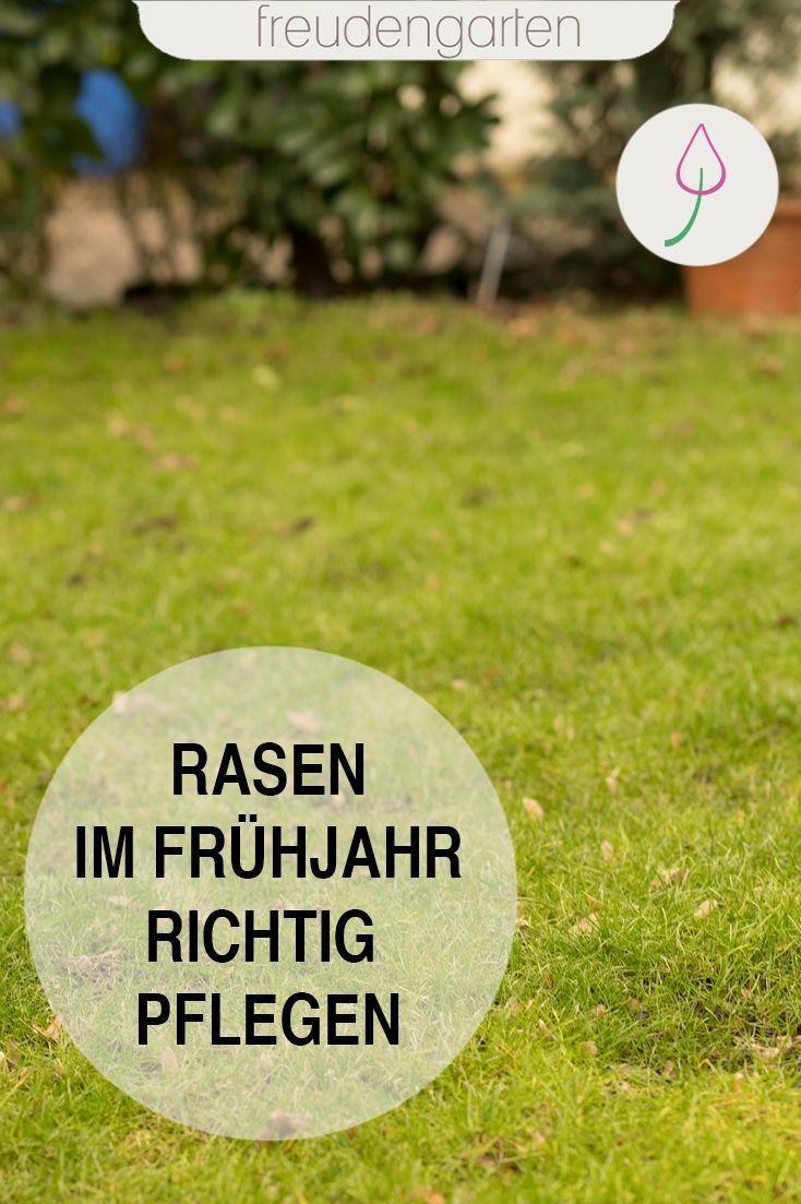 Freudengarten Gartentipp Frhjahrist Hierrasen Erneuern Frhjahr Pflegen Winter Garten Kaputt Dngen Tipps Rasen Dungen Rasenpflege Im Fruhjahr Rasen