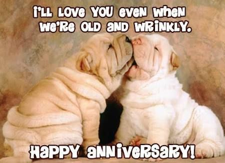 Image result for funny anniversary quotes