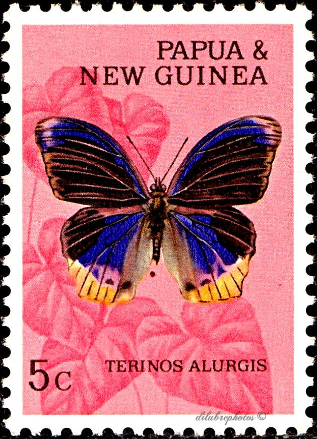 us postage stamps butterfly
