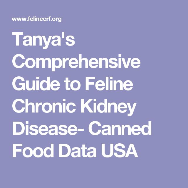 Tanya's Comprehensive Guide to Feline Chronic Kidney Disease- Canned Food Data USA